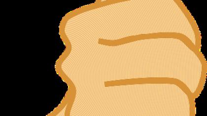 dax-forex-scalping-trading-renko-scalping na renko-myforex-agnieszka jagodzińska-strategie forex-price action-poziomy fibonacciego-strategia renko-scalping na forex